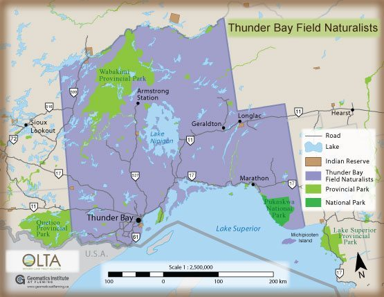 Thunder Bay Field Naturalists OLTA
